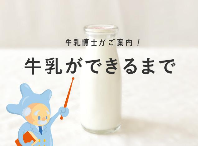 アイ・ミルクの牛乳ができるまで。
